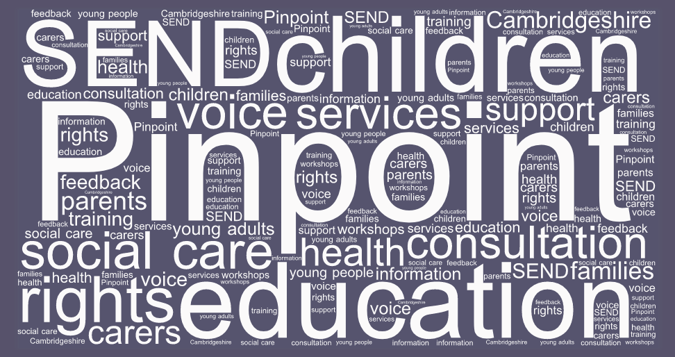 special needs word cloud